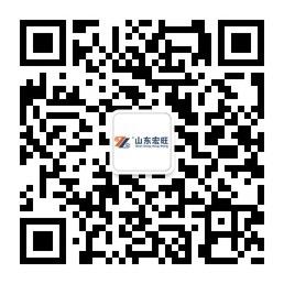 山东雷竞技官网